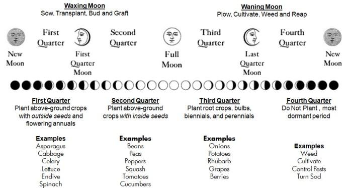 Moon Planting - tar2trees.com